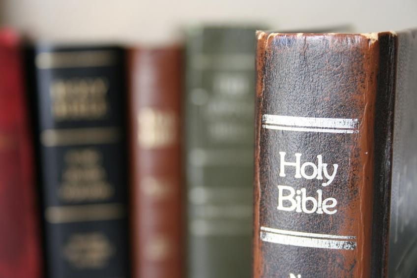 best-study-bibles